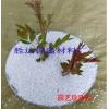 批发园艺珍珠岩 栽培基质 松土透气 无土栽培